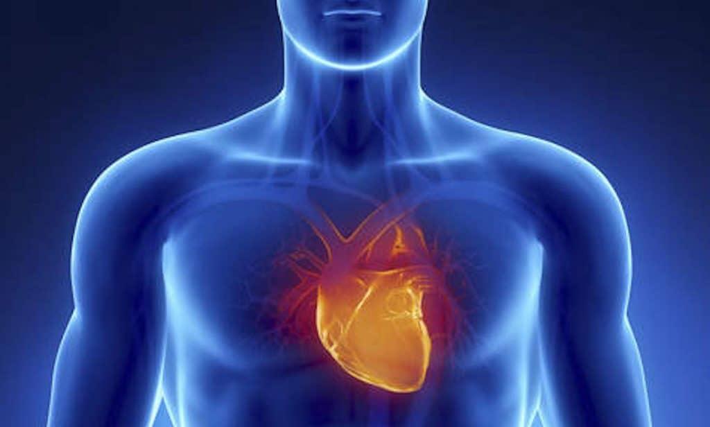 Le Coeur (Xin), le sang et la joie | Massage Magnergy