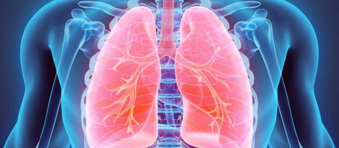poumons-1024x621